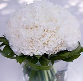 White Carnation Arrangement